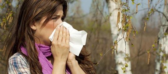 actualit s sant en tunisie maladie et traitement combattre l 39 allergie au pollen. Black Bedroom Furniture Sets. Home Design Ideas